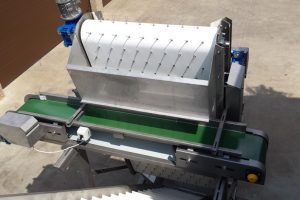 Green bean processing machines, Bean cluster removing belt, Selection, sorting of product