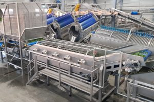 Spinach processing machines, Spinach washer, Washer for spinach, Food processing equipment, Washer for food industry, Washer for vegetable, Vegetable washer