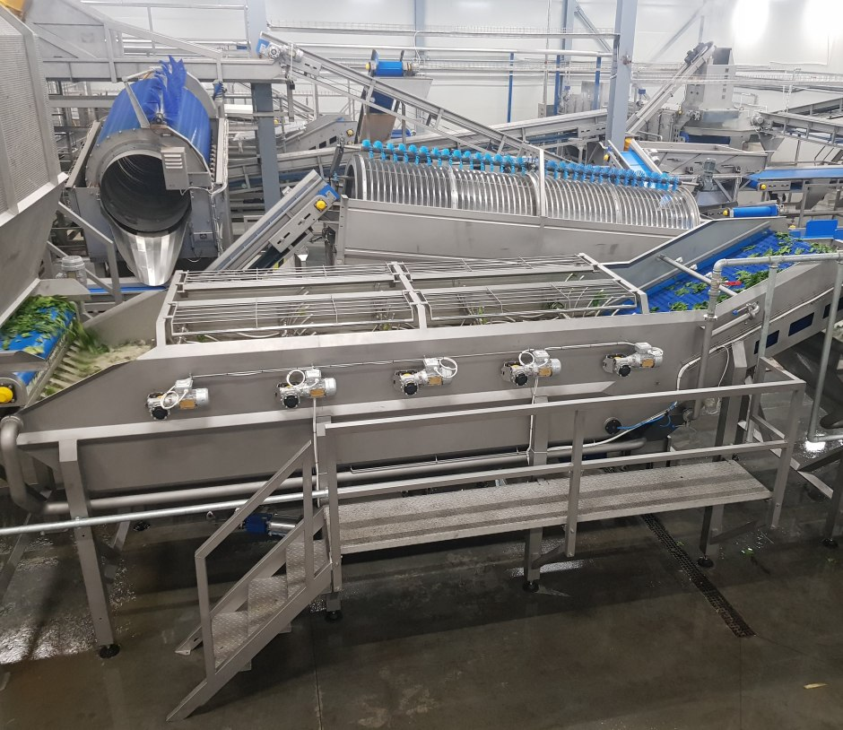 SPINACH WASHERSW-10A SpinachWash - food processing equipment
