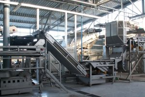Hydraulic destoner for green peas, Washing, cleaning of product.