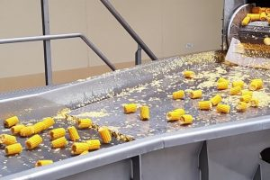 Equipment and solutions for vegetable processing.