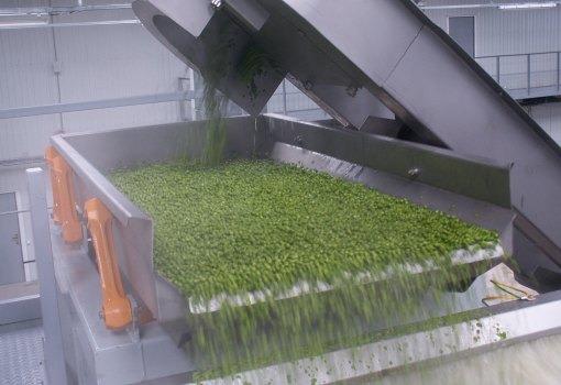 Dopravníky, Elevátory, Priemyselné vibrátory,Conveyors, Elevators, Industrial Vibrators, Vibration system for food industry, flat conveyors